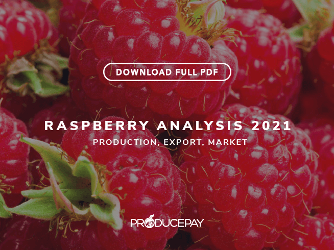 producepay-white-paper-analysis-2021-raspberry